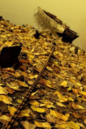 Jesenná loď na dunaji