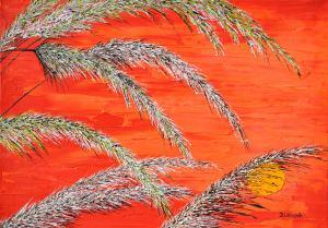 Červený. západ slnka v tráve