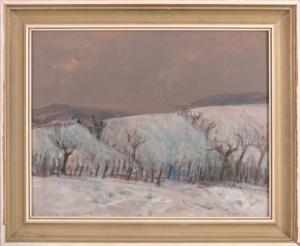 Vinice v zime III.