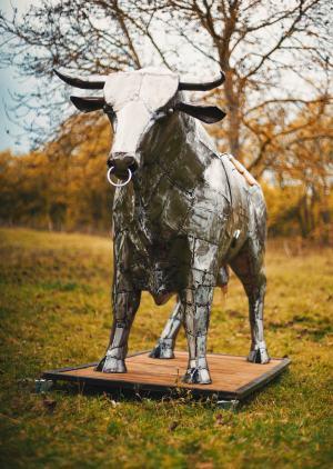 Stell Bull-Gril