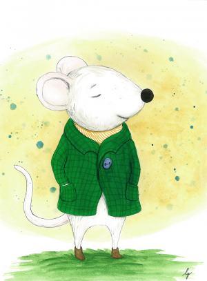 Myšiak