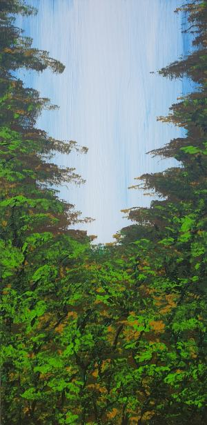 Pekný les 3