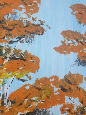 Nebeské brezy 2