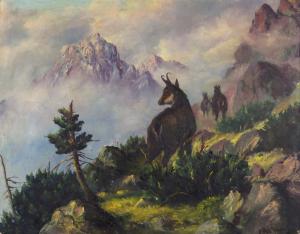 Kamzíky v Tatrách