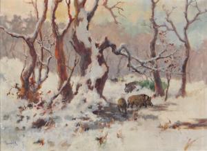 Diviaky v lese