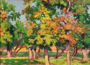 Stromy v parku