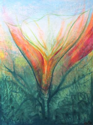 Tajomstvo krásy kvetov