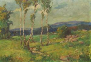 Krajina s brezami